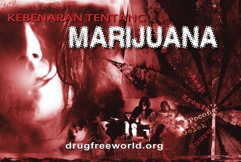 film pencegahan narkoba efek efek langsung dari mariyuana dan menghisap ganja
