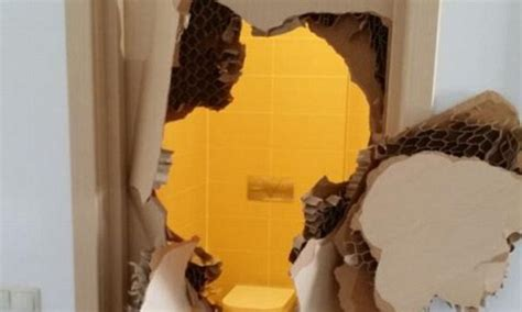 trapped in a bathroom american bobsledder johnny quinn tears through his