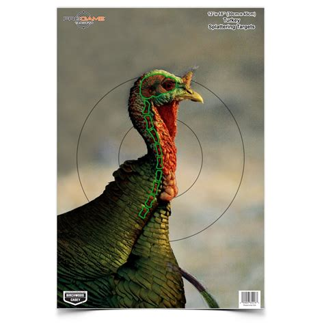 printable wild turkey targets birchwood casey sporting goods pregame 174 12 quot x 18 quot turkey