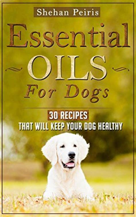 essential oils for itchy dogs 52 best images about essential oils for pets on diffusers itchy and