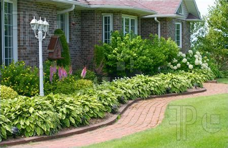 house landscaping landscape arrangements for your house s front gardening