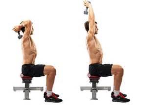 les 6 meilleurs exercices biceps triceps pour prise de masse