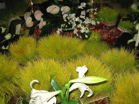 i giardini di adone lavureddi giardini di adone amedit