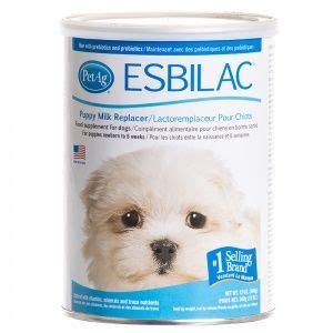 esbilac puppy formula 17 best ideas about weaning puppies on new puppy puppy care and