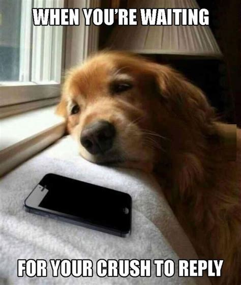 totally agreewaiting  bae  text   pic