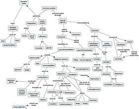 ihmc cmaptools concept map nervous system jdn