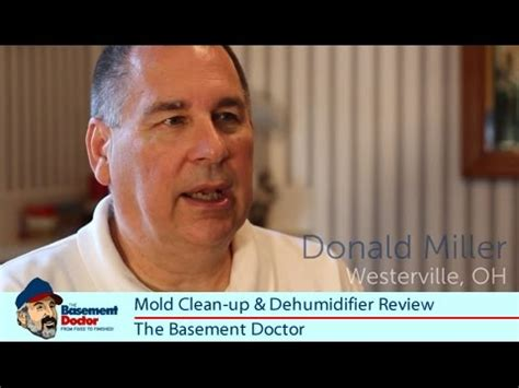 the basement doctor reviews how to clean up mold how to save money and do it yourself