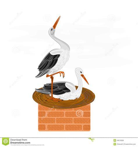 cigognes et nid sur un vecteur de chemin 233 e illustration de