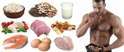 7 protein foods building diet top 7 list of high protein foods
