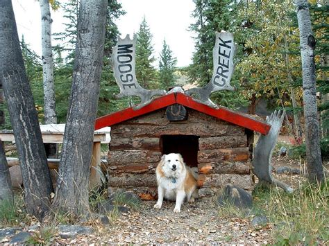 dog house cabin log cabin dog house car interior design