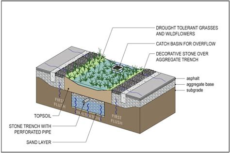 rain garden cross section rain garden design and construction sustainable water