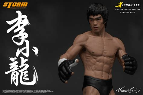 Figure Bruce 1 collectibles bruce 1 12th figure