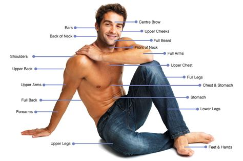 mens brazilian laser hair removal laser hair removal areas for men therapieclinic co uk