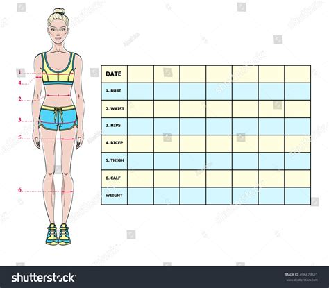 muffins vs muffintop body measurement and weight chart 2