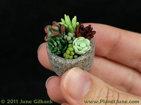 tiny plants polymer clay succulent garden i made this teeny weeny