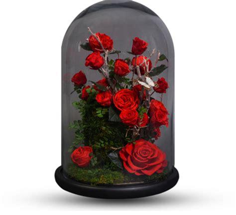 forever roses forever rose related keywords forever rose long tail