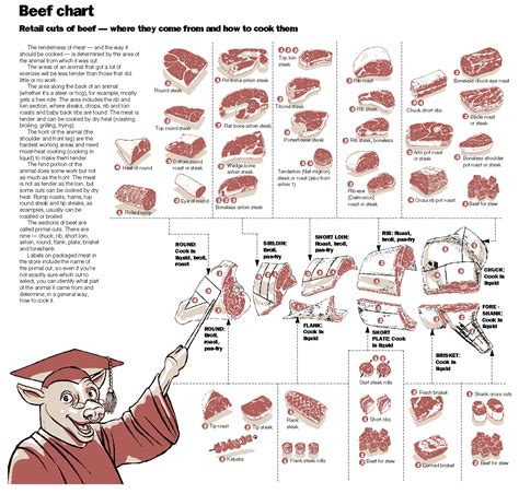 diagram of beef cuts cutting posters