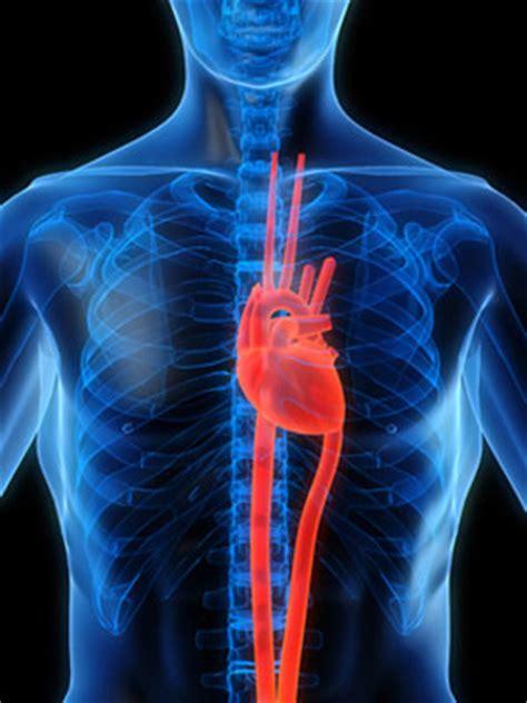 inyección de células madre repara daños en el corazón