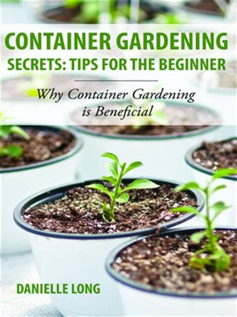 container gardening tips for beginners container gardening secrets tips for the beginner ok