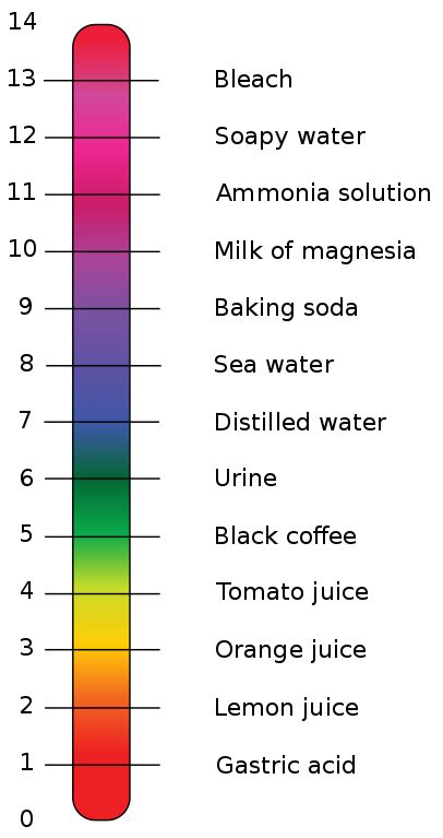 ph color scale original file svg file nominally 1 120 215 2 116 pixels
