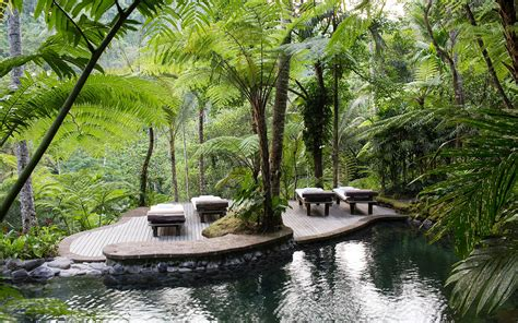 Como Shambhala Detox In Bali by Gallery Wellness And Spa Retreat In Ubud Como