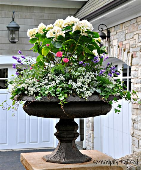 planters for container gardens serendipity refined summer urns and container