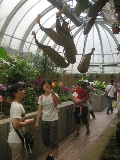 Zoological And Botanical Gardens Hong Kong Outdoors Zoological And Botanical Gardens