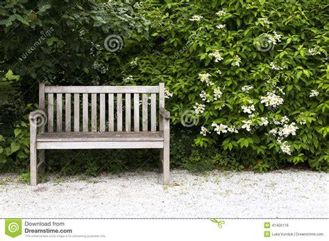 park bank bank in het park stock foto afbeelding 41405116
