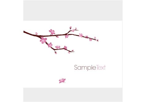 Designous Blossomed Cherry Tree Branch Download Free Vector Art