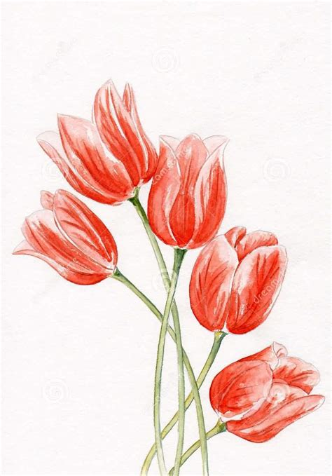 29 tulip flower tattoos designs and stencils collection