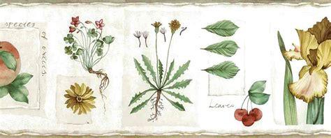 botanical wallpaper botanical vintage wallpaper border floral fruit cream green