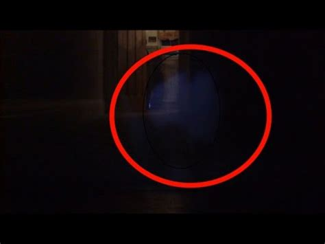 extraordinary ghost cat caught on camera youtube