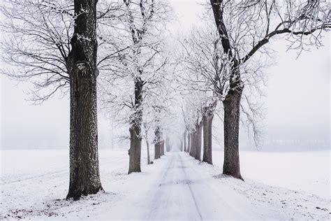 large xmas jpeg winter pictures 183 pexels 183 free stock photos