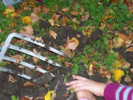 Kleine Gärten Bilder 4063 by Beet Beim Gew 228 Chshaus Nutzung 02