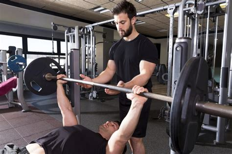 bench press every day what body parts should i work together in the gym