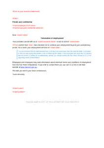 Offer Letter Probationary Period Sle Termination Letter During Probationary Period