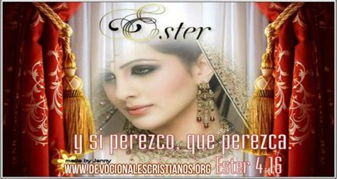 reina ester reina ester pictures to pin on pinsdaddy