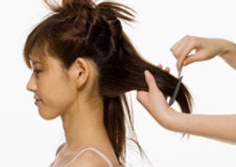 differnt styles to cut hair how to cut hair 53 latest haircuts hairstyle for women