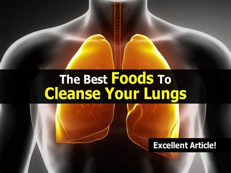 The Best Foods To Detox Your by The Best Foods To Cleanse Your Lungs