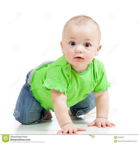 baby in crawling kid infant baby crawling stock image image 35422571