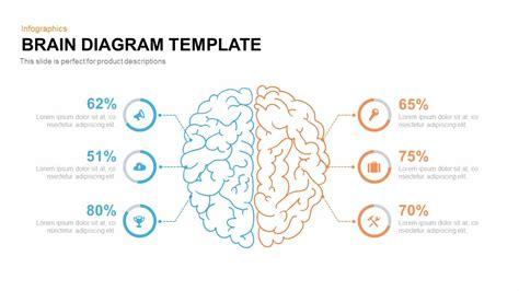brain diagram template slidebazaar