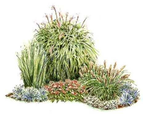 Corner of Grasses