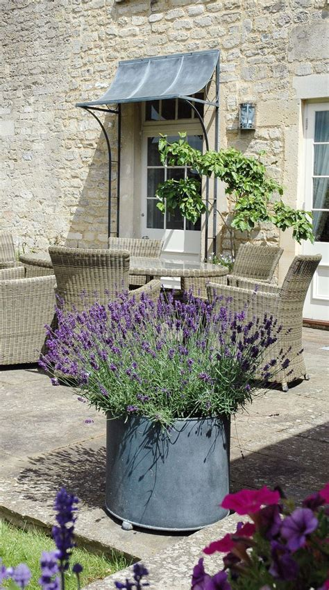 Large Patio Containers Best 25 Large Garden Pots Ideas On