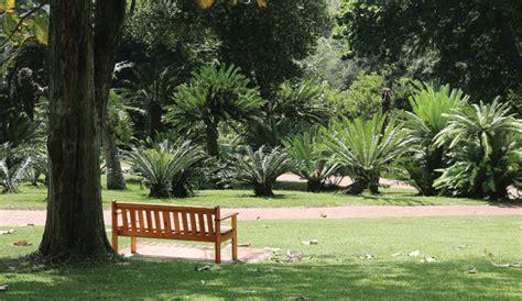 durban botanic gardens durban botanical gardens