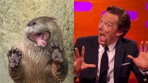 Benedict Cumberbatch Otter Meme - benedict cumberbatch makes hilarious otter faces video