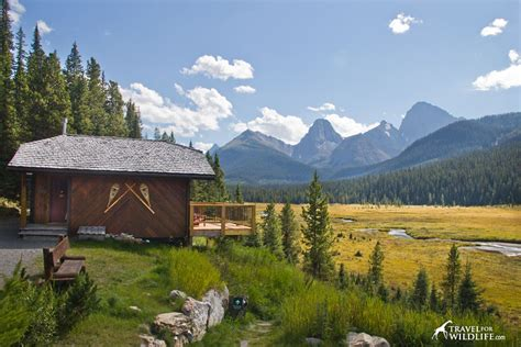 Canmore Cabins by The Moose Of Mount Engadine Lodge Alberta Travel For