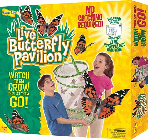 large butterfly set butterfly kit for schools