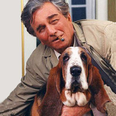 all famous dog names from tv movies politics books and best images of famous dogs with descriptions and links