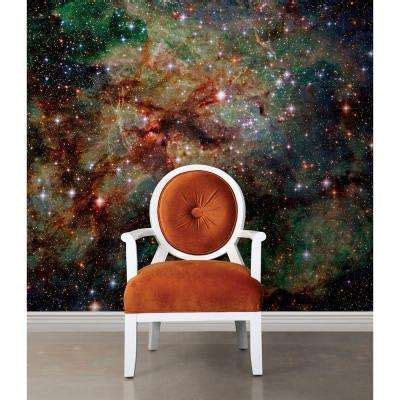 national geographic wall mural national geographic wall murals wall decor the home depot