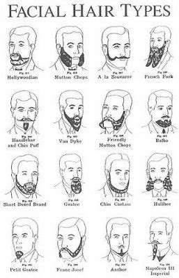 looking for what kind of hair to use for box braids the beardo guide to beard styles and beard types beardilizer